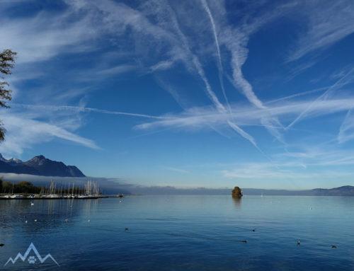 Um den Genfer See gen Norden