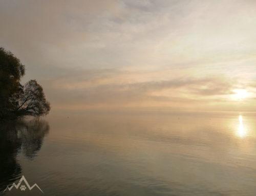 In der ersten Reihe mit Seeblick in der Schweiz