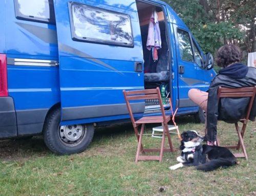 Wie plant man die erste Womo-Reise mit Hund? Erfahrungen und Erlebnisse von Hündin Heaven und ihren Zweibeinern